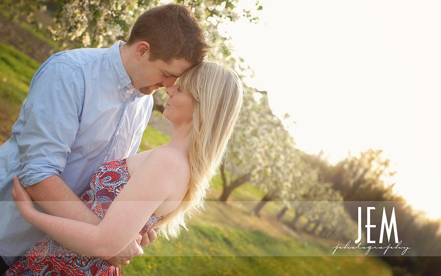 sylvania ohio engagement photographer