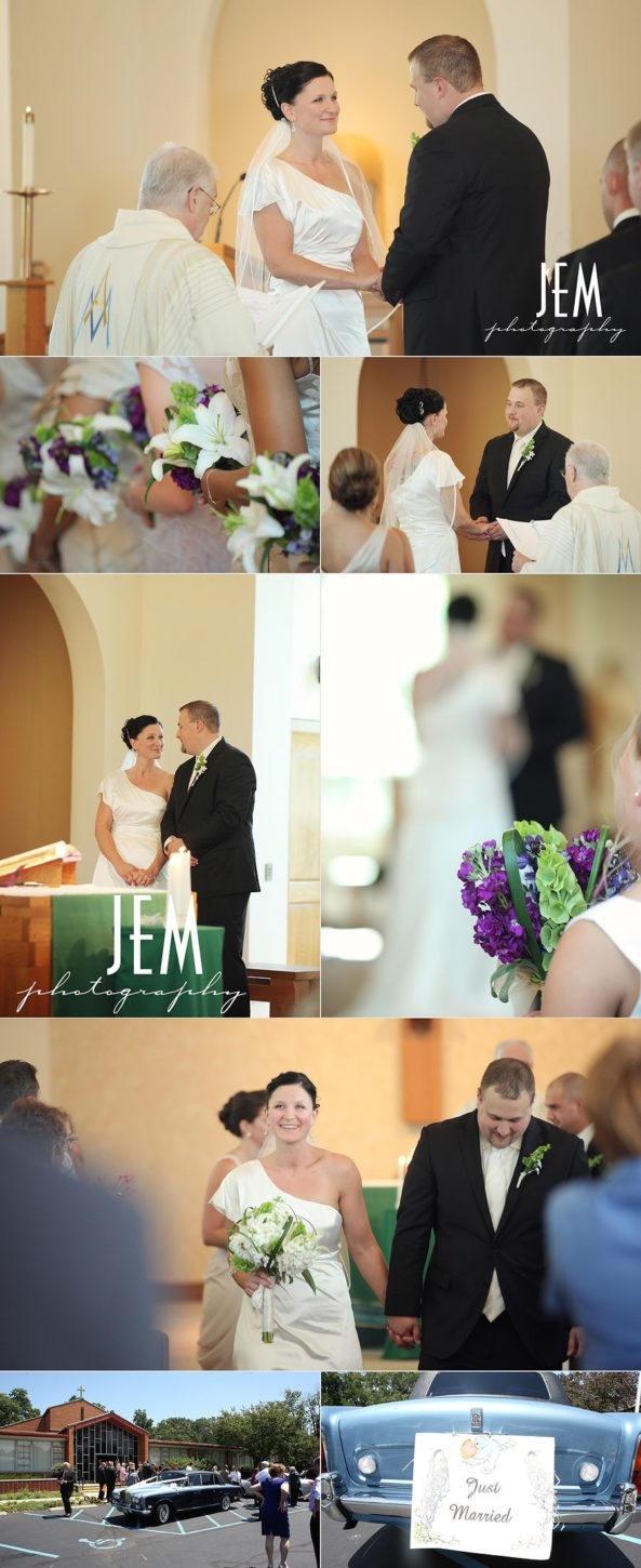 Toledo Zoo Wedding