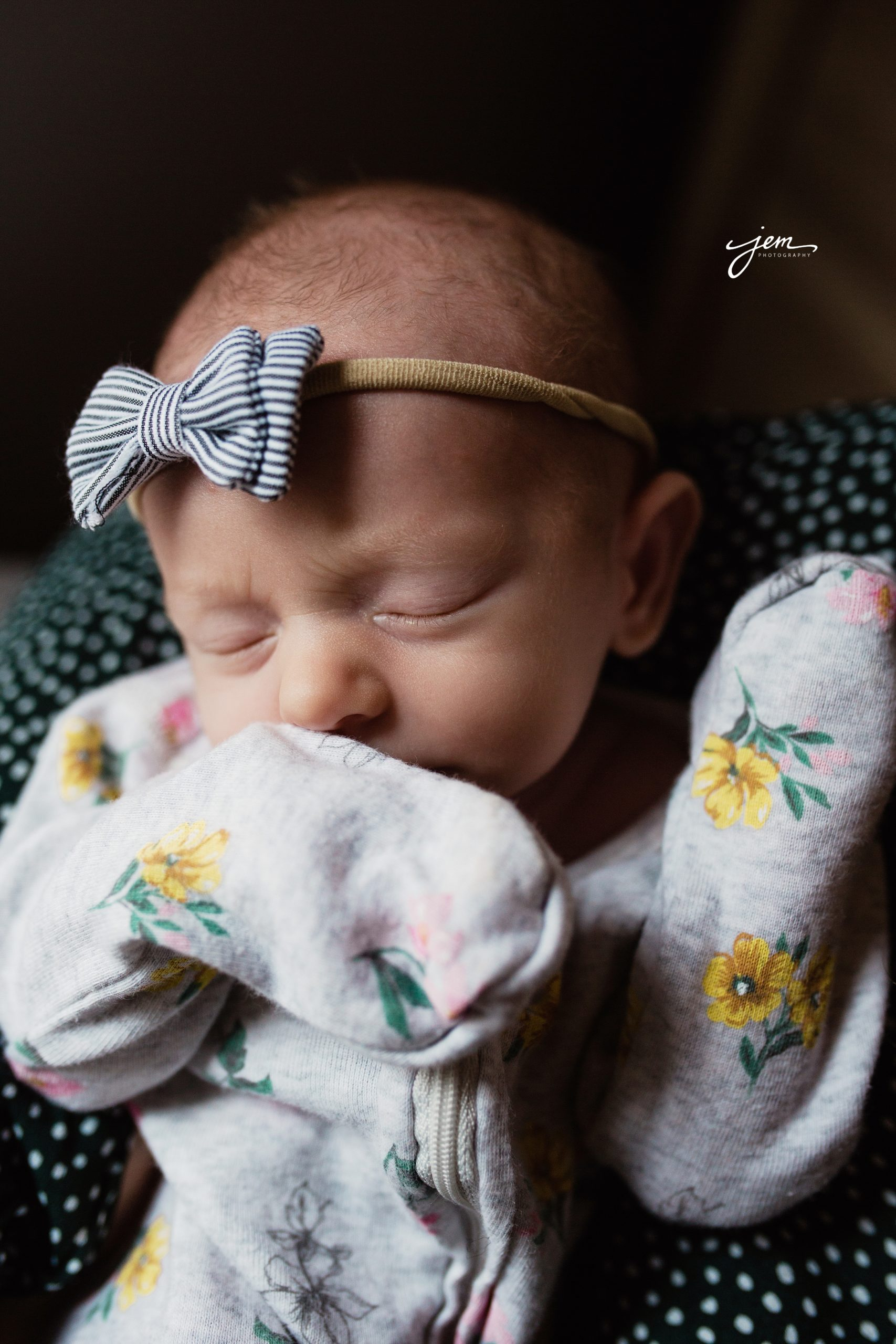 Sylvania Ohio family Photographer_0813.jpg